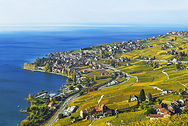 Vineyards in autumn with a view of the wine-producing Cully village, Lavaux, Canton of Vaud, Switzerland, Europe