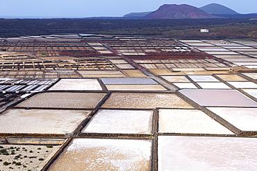 Sea salt production, salt pans of Janubio Salinas de Janubio, Lanzarote, Canary Islands, Spain, Europe