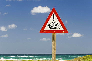 Warning sign, crossing turtles, Cape Agulhas, Western Cape, South Africa, Africa