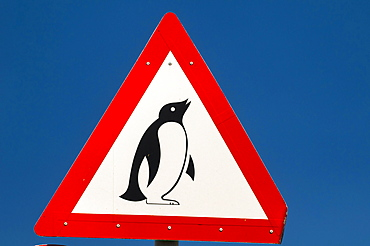 Warning sign, penguins, Cape Agulhas, Western Cape, South Africa, Africa