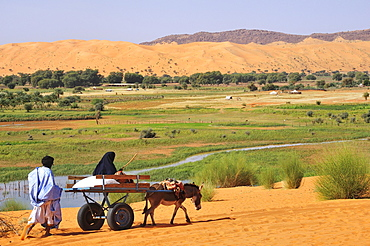Donkey cart being pushed through the soft sand, Moudjeria, Tagant region, Mauritania, Africa