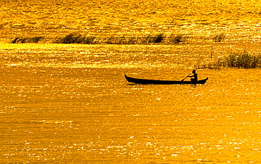 Man paddling boat on River Ayeyarwady or Irrawaddy, evening mood golden light, Mandalay, Mandalay Division, Myanmar, Asia