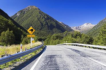 "Warning sign, ""Kiwis next 4km"" at Greyneys Creek, looking towards Mt. O'Malley, 1703m, and Mt. Oates, 2041m, Canterbury Region, New Zealand, Oceania"