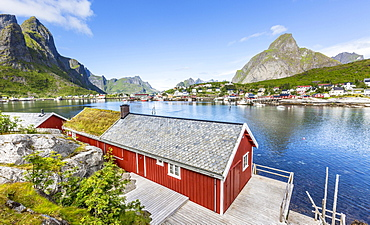 Red house with a view over the fjord in summer, Reine or Rorbuer Rorbu fishing village, Reinefjord, Moskenesøy, Lofoten, Norway, Europe