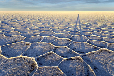 Photographer's shadow on honeycomb structure of Salar de Uyuni, salt flat, morning light, Altiplano, Lipez, Bolivia, South America