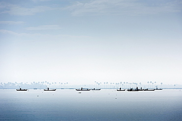 Cockle pickers with their boats, Vembanad Lake, Kerala, India, Asia