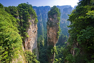 Hallelujah Mountains, sandstone towers, mountains of Zhangjiajie, Wulingyuan National Park, Hunan Province, China, Asia