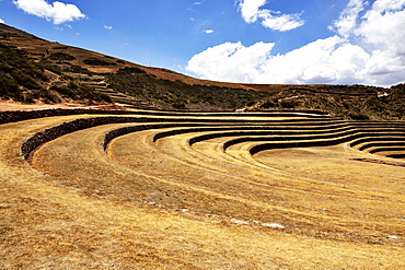 Inca terraces in the Sacred Valley, agriculture, Moray, Ollantaytambo, Peru, South America