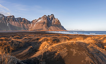 Evening atmosphere, Black sand beach, dunes with dry grass, mountains Klifatindur, Eystrahorn and Kambhorn, headland Stokksnes, massif Klifatindur, Austurland, East Iceland, Iceland, Europe