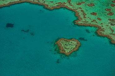 Aerial view, Heart Reef, Great Barrier Reef, UNESCO World Heritage Site, Queensland, Australia, Oceania
