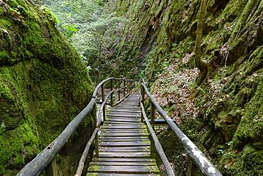 Rastenbachklamm, at Altenburg, Kaltern, Uberetsch, South Tyrolean Unterland, South Tyrol, Italy, Europe