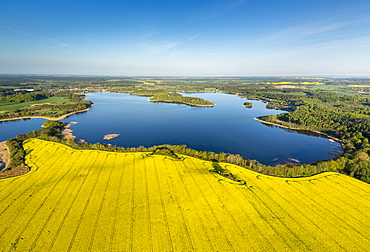 Krakower Seenlandschaft, lakeland nature reserve, with rape fields in full bloom, Kuchelmiss, Mecklenburg Lake District, Mecklenburg-Western Pomerania, Germany, Europe