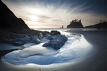 Sea stack on Second Beach in Olympic National Park, Washington, United States, North America