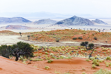 Landscape in the Tsondab Valley Nature Reserve, Namib-Naukluft National Park, Namibia, Africa