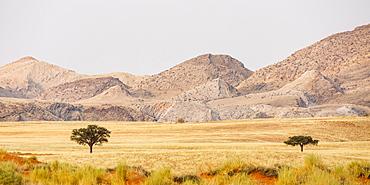 Landscape in Tsondab Valley Nature Reserve, Panorama, Namib-Naukluft National Park, Namibia, Africa