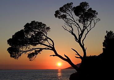 Sunset on the coast, Brela, Dalmatia, Croatia, Europe