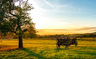 Hay wagon on the field at sunset, flatness, Saxon Switzerland, Saxony, Germany, Europe