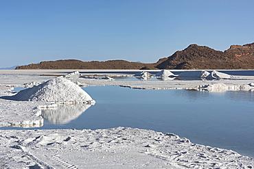Salt mining at the salt lake Salar de Uyuni, Altiplano, Bolivia, South America