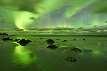 Northern Lights, Aurora Borealis above the beach of Utakleiv, Lofoten, Norway, Europe