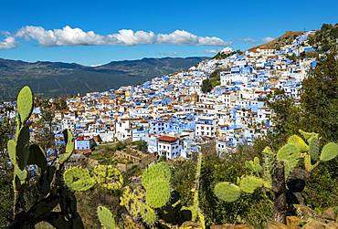 View on blue houses of the medina of Chefchaouen, Chaouen, reef mountains, Tangier-Tetouan, Morocco, Africa