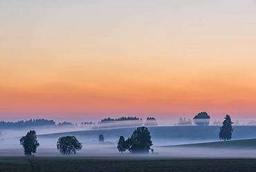 Sunrise with ground fog over Allgaeu hills, Fuessen, Allgaeu, Bavaria, Germany, Europe