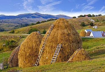 Haystack, Diemen, Pisce, Province of Pluzine, Montenegro, Europe