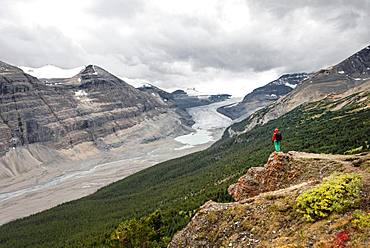 Hiker standing on a rock, view in valley with glacier tongue, Parker Ridge, Saskatchewan Glacier, Athabasca Glacier, Jasper National Park National Park, Canadian Rocky Mountains, Alberta, Canada, North America