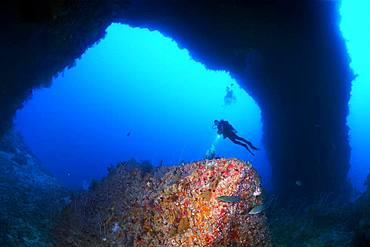 Diver looks at reef formation known as sarcophagus in archway from south plateau of Elphinstone Reef, Red Sea, Egypt, Africa