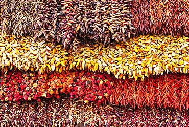 Various red and yellow dried chillies, chillies, market hall, funchal, Madeira, Portugal, Europe