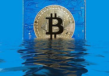 Bitcoin on a blue circuit board sinks into water, water reflection, symbol share price decline, Germany, Europe