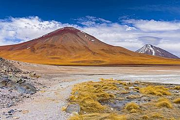 On the edge of Laguna Blanca, 4,331 m altitude, Andina Eduardo Abaro National Park, Altiplano, Departamento Potosi, Bolivia, South America