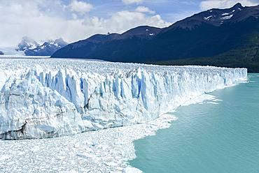 Glacier tongue, Glaciar Perito Moreno Glacier, Abort edge, Los Glaciares National Park, Andes, El Calafate, Santa Cruz, Patagonia, Argentina, South America