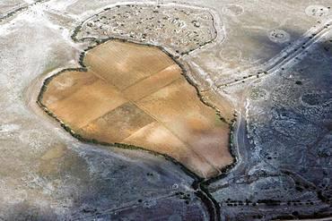 Heart-shaped fields in a dry landscape, Castilla-La Mancha, Spain, Europe