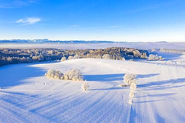 Winter landscape, forest area with alpine chain, near Muensing, Fuenfseenland, drone shot, alpine foothills, Upper Bavaria, Bavaria, Germany, Europe