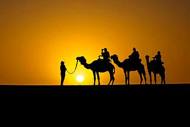 Silhouette of tourists on dromedaries at sunset in the desert south of Quarzazate, Morocco, Africa