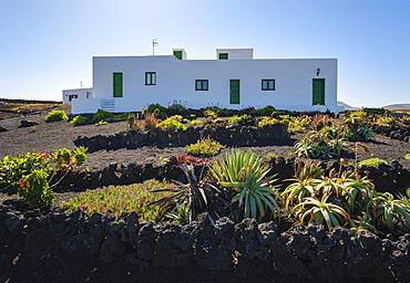 House with garden on lava gravel, La Santa near Tinajo, Lanzarote, Canary Islands, Spain, Europe