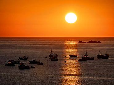 Fishing boats at sunset, Channel Island Guernsey, English Channel, Great Britain