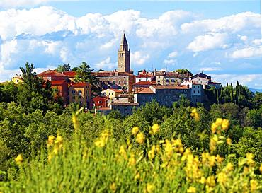Historical Old Town of Labin, Istria, Croatia, Europe