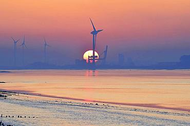 Wind turbines in front of setting sun, estuary of Ems into the North Sea, Ditzum, Rheiderland, East Frisia, Niedersachsen, Germany, Europe