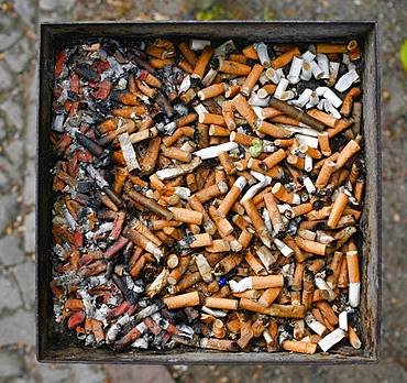 Full ashtray with cigarette butts, Berlin, Germany, Europe