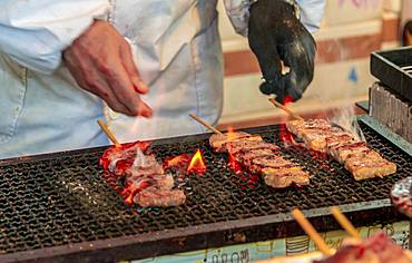 Grilled meat skewers at a food stand, Hanami Fest, Ueno Park, Tokyo, Japan, Asia
