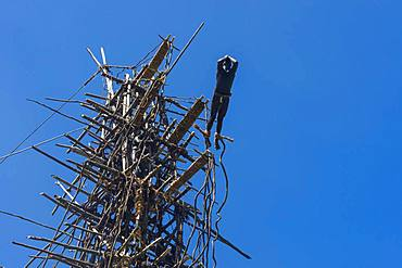 Man jumping from a bamboo tower, Pentecost land diving, Pentecost, Vanuatu, Oceania