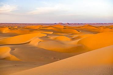 Evening light in the sanddunes of the Sahara, Timimoun, Algeria, Africa
