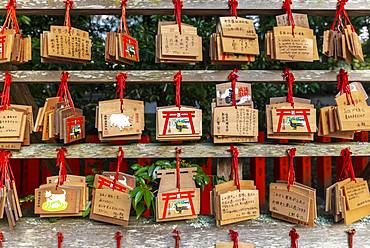 Written wishes to deities on small wooden boards, wish boards, Ema, Kumano Hayatama Taisha, Shinto Shrine, Wakayama, Japan, Asia