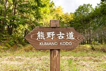 Signpost Pilgrimage Kumano Kodo, Wakayama, Japan, Asia