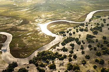 Aerial view, Swamp area, Okavango Delta, Botswana, Africa