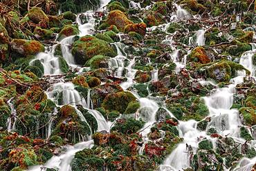 Water flows over mossed stones, Nagano, Matsumoto, Japan, Asia