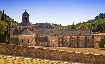 The Abbaye Notre-Dame de Senanque Romanesque Cistercian Abbey, near Gordes, Provence, France, Europe