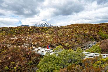 Hikers on bridge, hiking trail Tongariro Northern Circuit, Great Walk, volcano Mount Tongariro and Mount Ngauruhoe, Tongariro National Park, North Island, New Zealand, Oceania