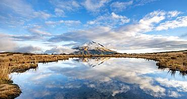 Water reflection in Pouakai Tarn, stratovolcano Mount Taranaki or Mount Egmont, Egmont National Park, Taranaki, New Zealand, Oceania